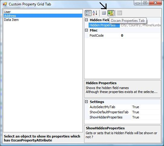 Extending PropertyGrid Adding custom PropertyTab and PropertyDescritors